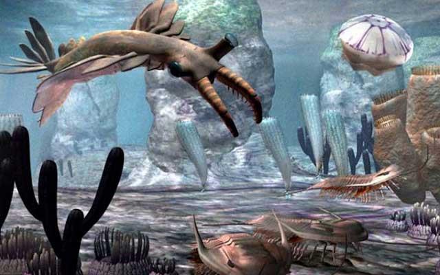 Ciri Ciri Zaman Paleozoikum Lengkap Periodesasi Geologis