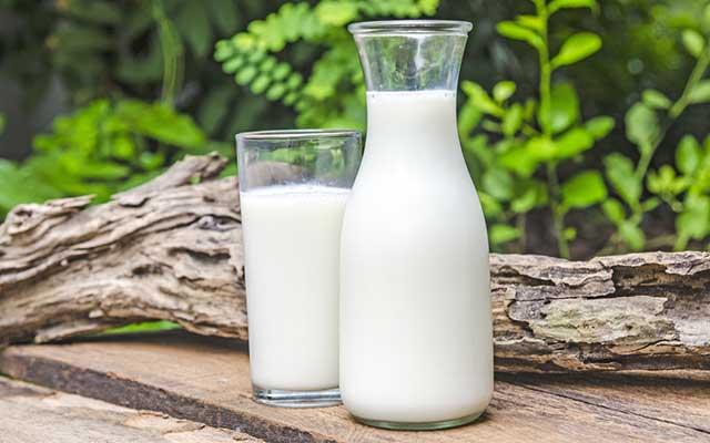 Susu Tanpa Pasteurisasi