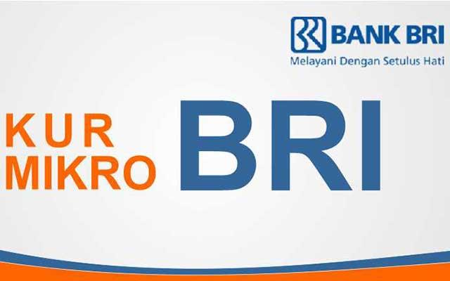 Jenis Kredit Usaha Rakyat Bank BRI