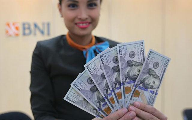 BNI Dollar