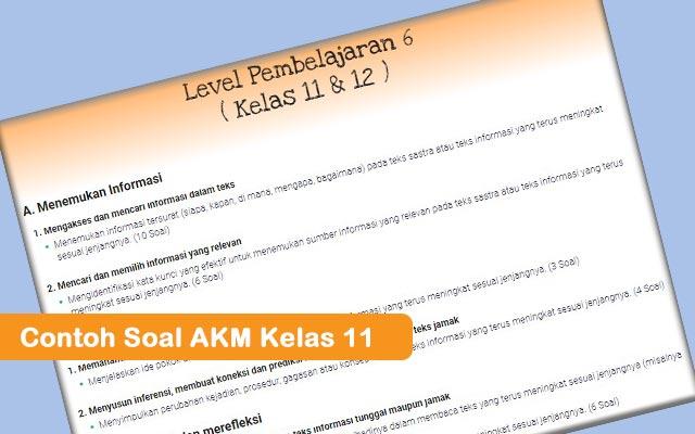 Contoh Soal AKM Kelas 11
