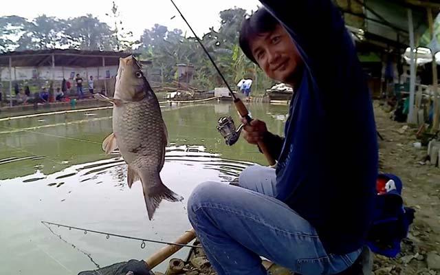 Umpan Ikan Mas Yang Dilarang